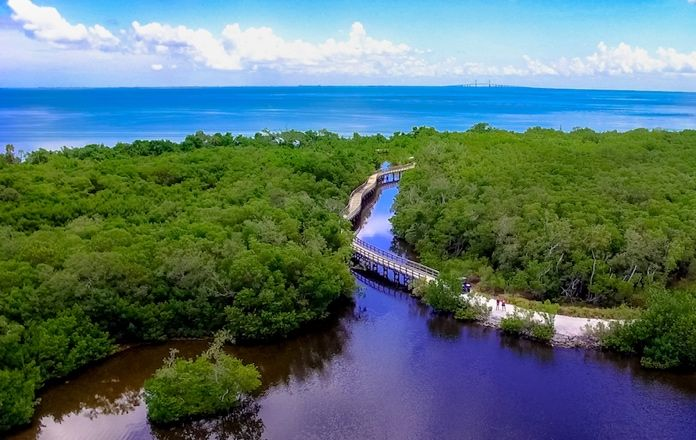 Experience The Bradenton Area's Wilderness